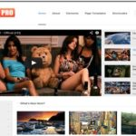 Top 10 best video themes for WordPress (July 2014)