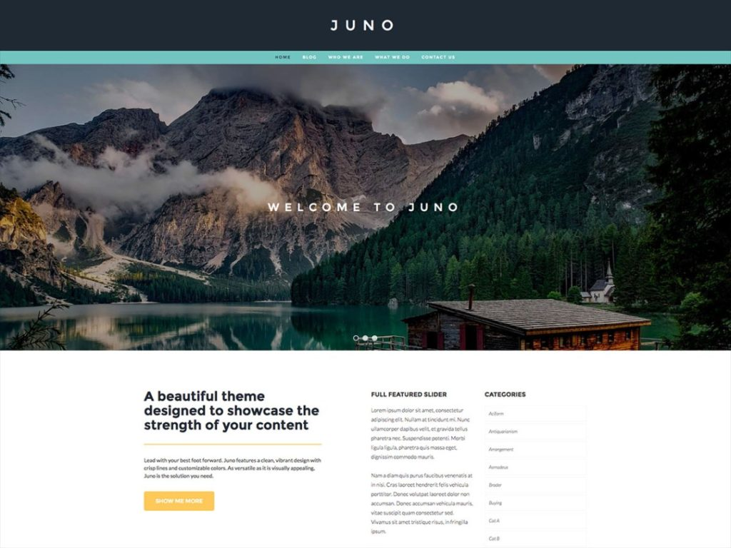WordPress theme for blog