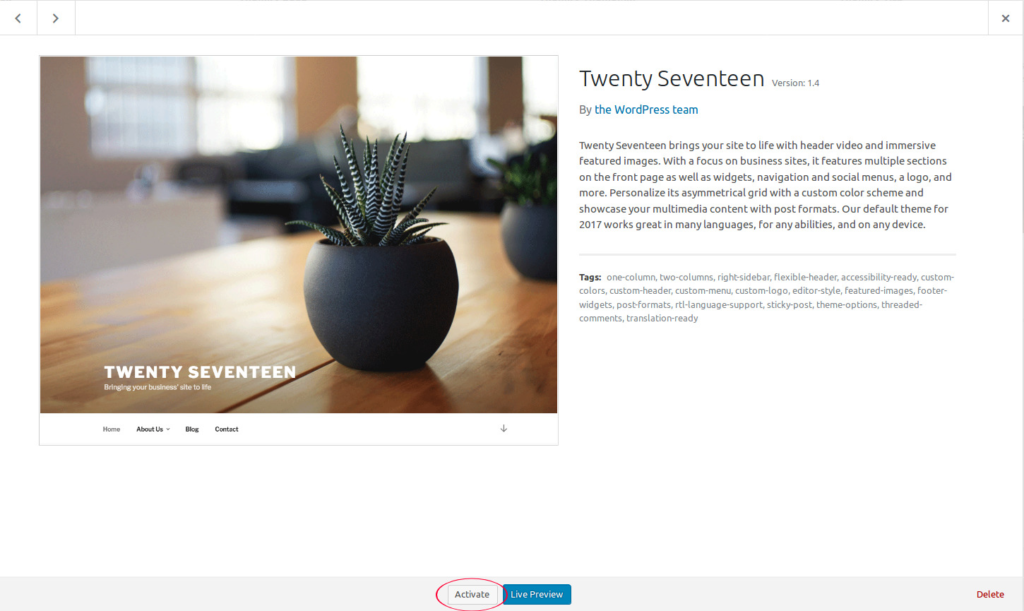 twenty-seventeen theme