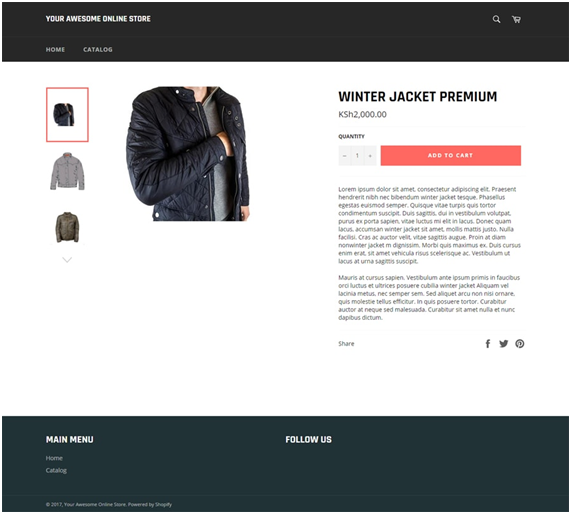Shopify product example