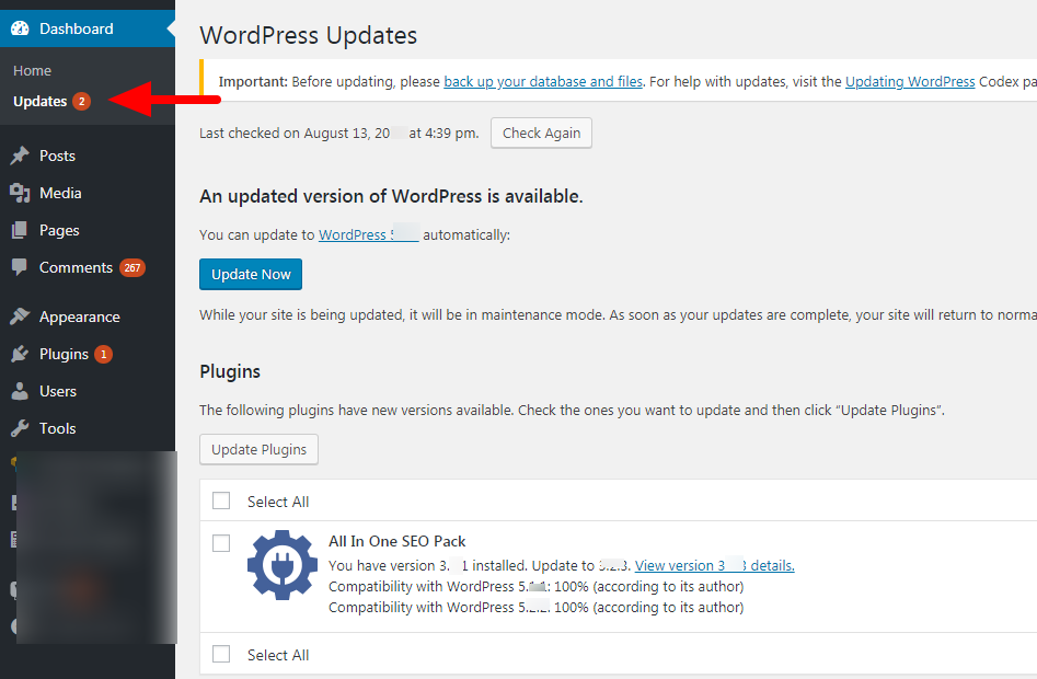 WordPress plugins and themes update page