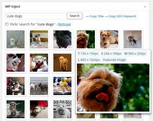 How to insert image in wordpress