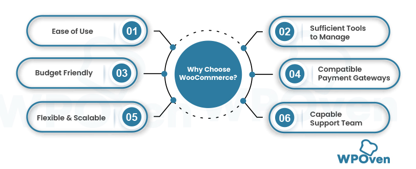 woocommerce infographics Woocommerce - The Complete Beginner's Guide