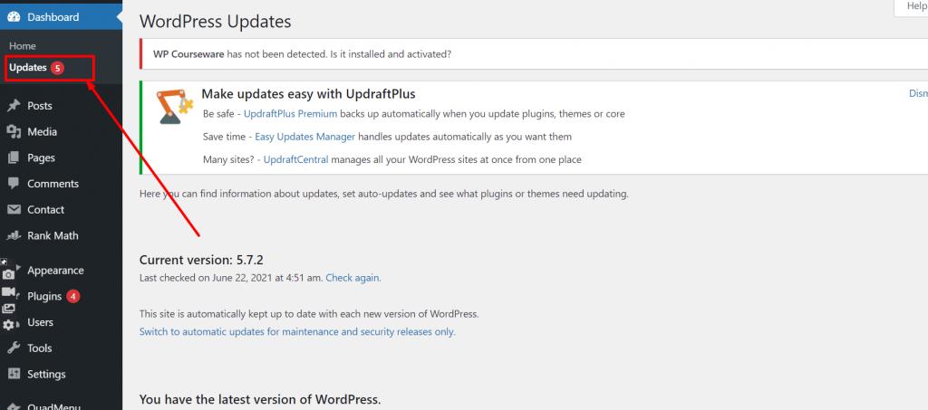 Screenshot 1 Update WordPress Theme Without Losing Customization 2021 [ 3 Methods ]