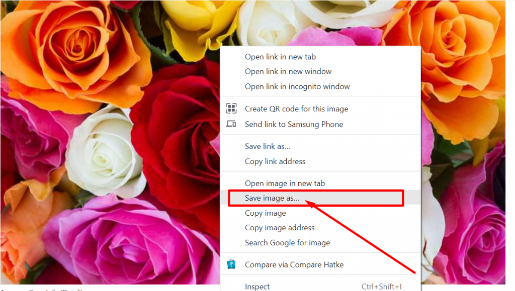 Protect images by disabling right click option