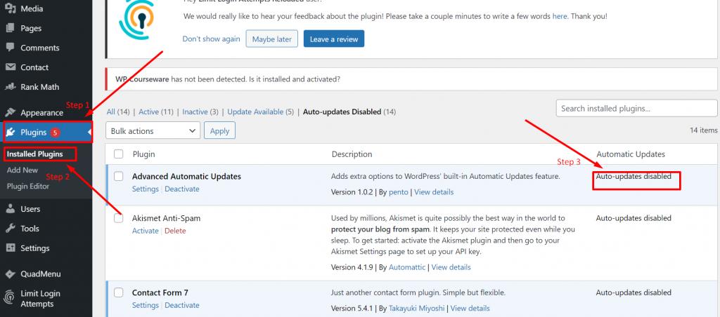 WordPress automatic updates