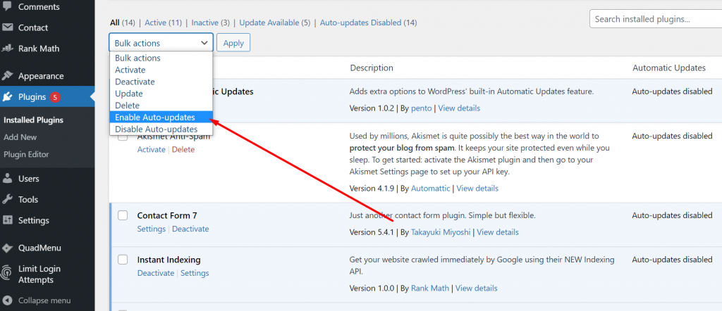Screenshot 9 1 WordPress Automatic Updates: How To Enable & Disable (2021)
