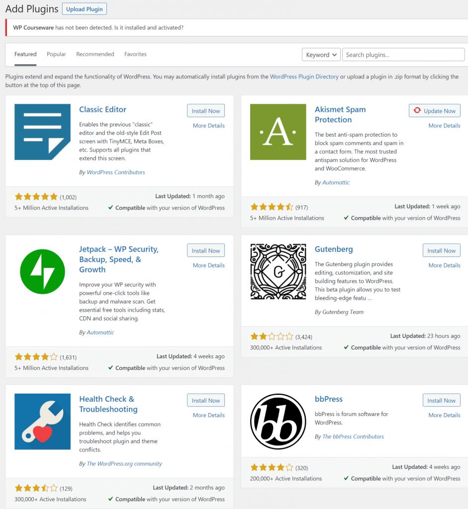 WordPress website cost :plugins
